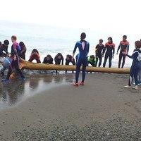 サンタートルのビーチクリーン海岸清掃活動のサムネイル